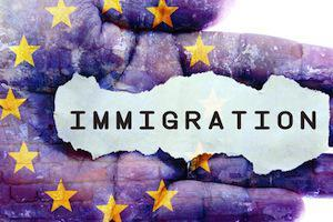 The Naturalization Interview - DuPage County Immigration