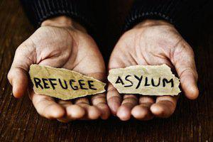 DuPage County asylum attorneys, ICE policy, transgender refugees